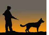 Desert_War_Dog_tn