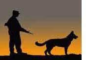 Desert_War_Dog_tn